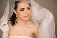 Bride holding the veil Royalty Free Stock Photos