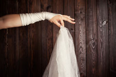 Bride holding a veil Royalty Free Stock Images