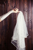 Bride holding a veil Royalty Free Stock Photography