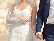 Bride Holding Veil Royalty Free Stock Photography
