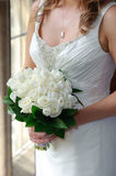 Bride holding white roses. Close up of white roses held by the bride Royalty Free Stock Image