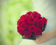 Bride holds bouquet of red roses. Summer green background Stock Images