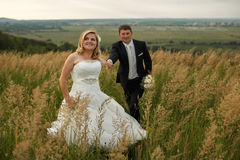 Bride holds groom's hand walking around the field Royalty Free Stock Photo
