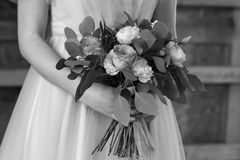 The bride holds a wedding bouquet. Black and white. The bride holds a wedding bouquet. The bride`s bouquet. Black and white. Close-up Stock Image