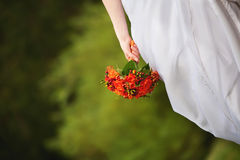 The bride holds a wedding bouquet orange Stock Image
