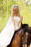 Bride and horse Royalty Free Stock Photography