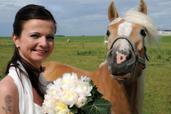 Bride with horse Stock Image