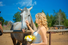Bride with horse Royalty Free Stock Photography