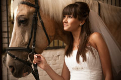 Bride with horse Stock Photos