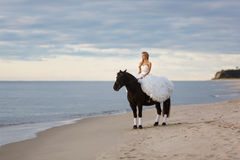 Bride on a horse by the sea Stock Images
