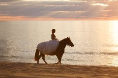 Bride on a horse at sunset by the sea Stock Photography
