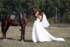 Bride and a horse Stock Photo