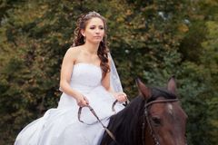 Bride on horse Stock Photos
