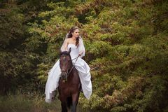 Bride on horse Stock Images