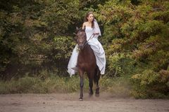 Bride on horse Royalty Free Stock Images