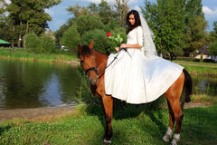 Bride horseback Royalty Free Stock Photos
