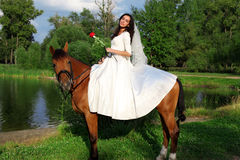 Bride horseback at horse Stock Photography