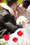 Bride hugging with groom behind red tulips Royalty Free Stock Photography