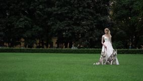 Bride with husky dogs. In park stock video