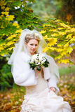 Bride In Autumn Royalty Free Stock Images
