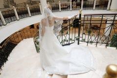 Bride In Wedding Dress, Rear View Stock Photos