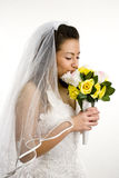 Bride Isolated on white Royalty Free Stock Image
