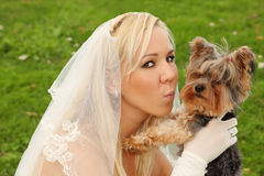 Bride keeps and kisses small dog Royalty Free Stock Images
