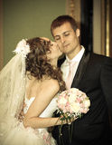 The bride kisses the groom on a cheek Royalty Free Stock Image