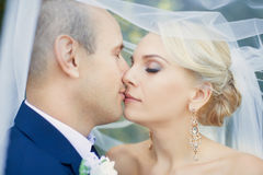 The bride kisses the groom gently stock image