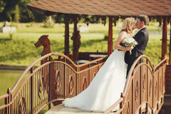 Bride kisses a groom while they stand on old wooden bridge Stock Images