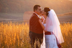 Bride kisses a groom tender  leaning on him Stock Photo