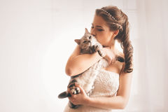 Bride kissing cute cat Stock Photography