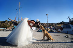 Bride kissing a dog on a Santorini harbor Royalty Free Stock Image