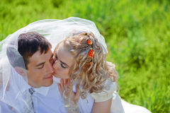 Bride kissing groom Stock Image
