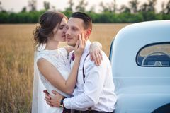 The bride is kissing the groom at sunset in the field royalty free stock image