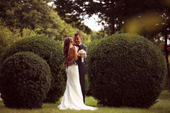 Bride kissing her groom Royalty Free Stock Image