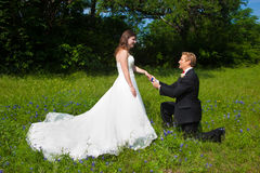 Bride with kneeling groom. A men in a tux knees before a bride in a long flowing wedding gown in a field of flowers Royalty Free Stock Image