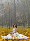 Bride on leaves Stock Images