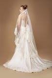 Bride in Light Sumptuous Dress and Veil Stock Photos