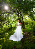 Bride in long dress under big trees at old forest Stock Photography