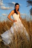 Bride Long Grass stock image