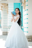 Bride with long hair Stock Photography