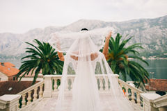 Bride with long veil back view. Bride in luxury wedding dress holding long veil Stock Photography