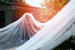 Bride with long veil. Bride with a long veil in the garden Stock Images