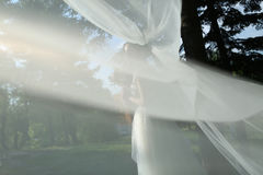 Bride with long veil. Bride with a long veil in the garden Royalty Free Stock Images