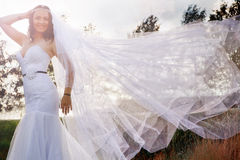 Bride with a long veil. Photo of bride with a long veil Stock Photo