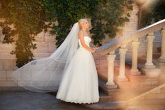 Bride with long veil. Standing near the column Stock Image