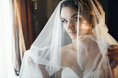Bride looks misterious throw the veil Stock Images