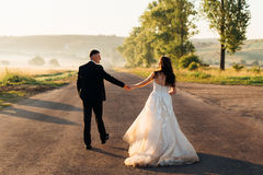 Bride in luxurious dress walks with a groom royalty free stock image