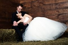 Bride lying on groom's lap in barn Royalty Free Stock Photography